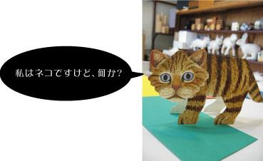 私はネコですが、なにか?.jpg