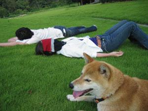 芝生で寝転んだ.jpg