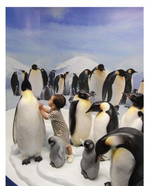 ペンギンかわいいな.jpg