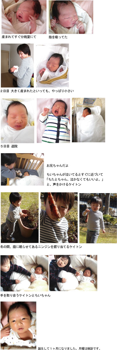 ブログ写真.jpg